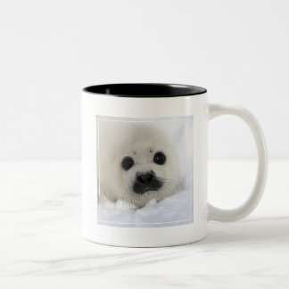 Baby Harp Seal Two-Tone Coffee Mug