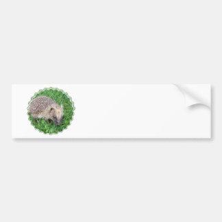 Baby Hedgehog Bumper Sticker Car Bumper Sticker