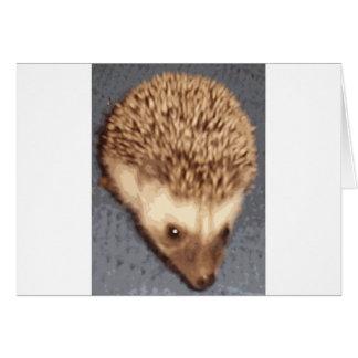 baby hedgehog cards