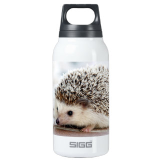 Baby Hedgehog Insulated Water Bottle
