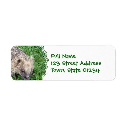 Baby Hedgehog Mailing Label Return Address Label