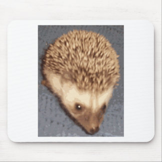 baby hedgehog mouse pad