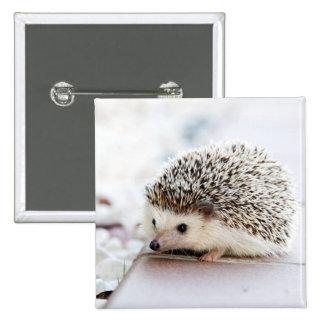 Baby Hedgehog Pinback Button