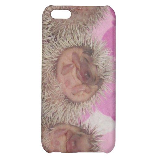 Baby hedgehogs iPhone 5C case