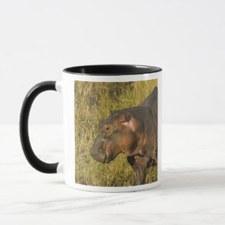 Baby Hippo out of water away from adults along Mug
