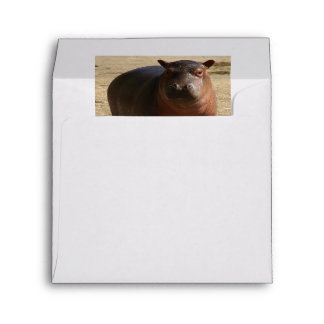 Baby Hippo With Lots of Attitude Envelope