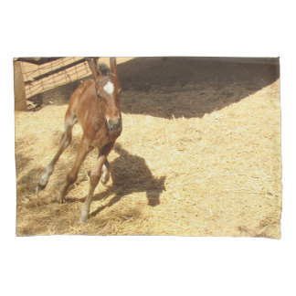 Baby Horse Four Day Colt Animal Pillowcase