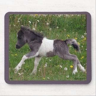 Baby Horse Mousepad