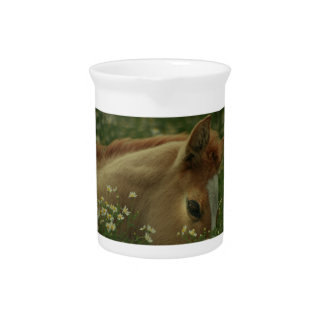 Baby Horse Pitcher