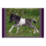 Baby Horse Profile Card Large Business Cards (Pack Of 100)