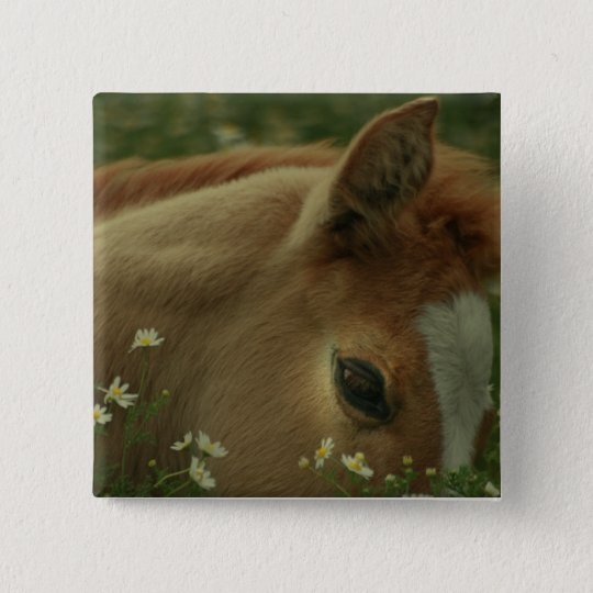 Baby Horse Square Pin