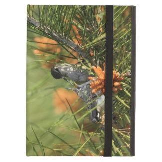Baby Hummingbird Being Fed iPad Case