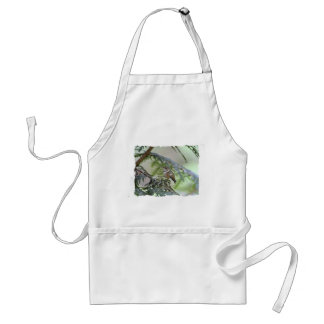 Baby Hummingbird Sticking Out Its Tongue Aprons