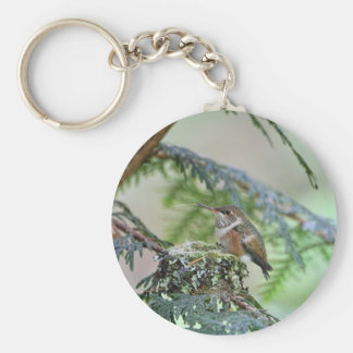 Baby Hummingbird Sticking Out Its Tongue Basic Round Button Keychain