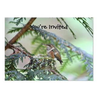 """Baby Hummingbird Sticking Out Its Tongue 5"""" X 7"""" Invitation Card"""