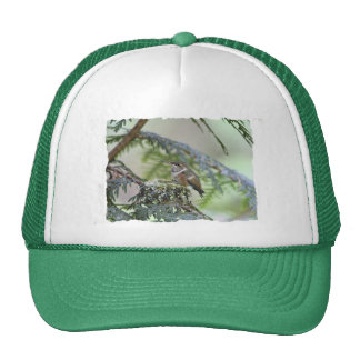 Baby Hummingbird Sticking Out Its Tongue Trucker Hat