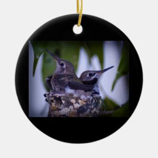Baby Hummingbirds Ceramic Ornament