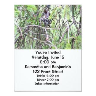"Baby Hummingbirds in a Nest 4.25"" X 5.5"" Invitation Card"