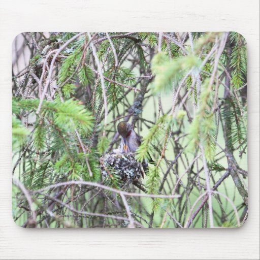 Baby Hummingbirds in a Nest Mousepad