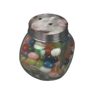 baby husky Dumbo rat candy tin