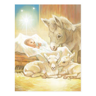 Baby Jesus Nativity with Lambs and Donkey Postcard