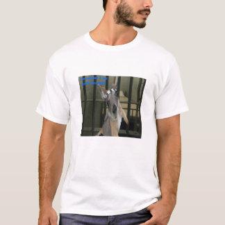 Baby Kangaroo Proclaims his innocence T-Shirt