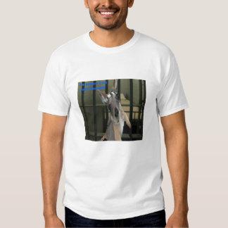 Baby Kangaroo Proclaims his innocence T Shirts