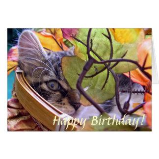 Baby Kitty Cat Kitten, One Eye, Cute Fall Birthday Card