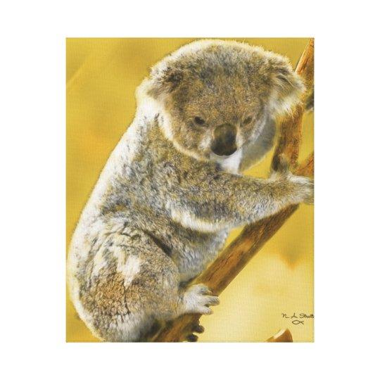 Baby Koala Bear Gallery Wrapped Canvas