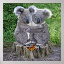 Baby Koala Bear Huggies Poster