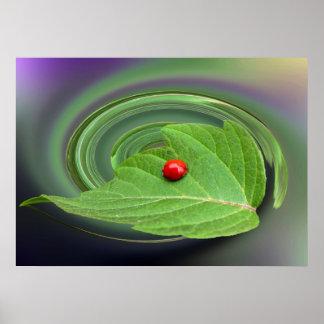 baby ladybug poster