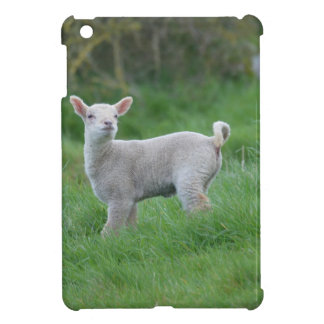 Baby Lamb Cover For The iPad Mini