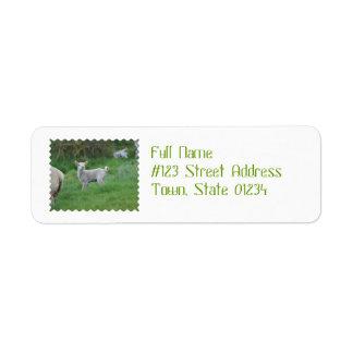 Baby Lamb Custom Return Address Labels