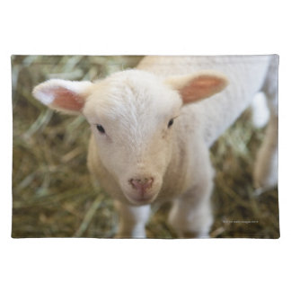 Baby Lamb Placemat