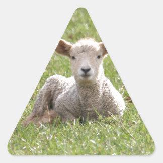 Baby Lamb Triangle Sticker