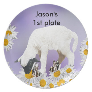 Baby Lambs first steps Plates