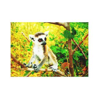 Baby lemur catta gallery wrap canvas