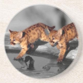 Baby Leopards Drink Coaster