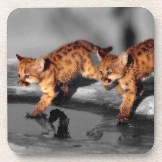 Baby Leopards Beverage Coasters