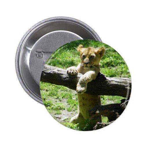 Baby Lion Cub On Branch 2 Inch Round Button