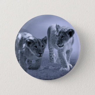 Baby lion cubs at play pinback button