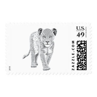 Baby Lion Postage Stamps