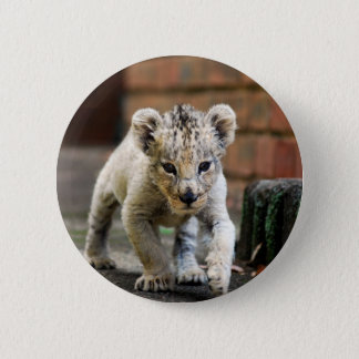 Baby lion prowler button
