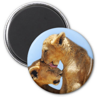 Baby lions love 2 inch round magnet