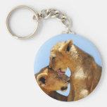 Baby lions love basic round button keychain