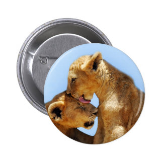 Baby lions love button