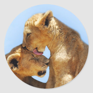 Baby lions love classic round sticker
