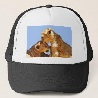 Baby lions love trucker hat