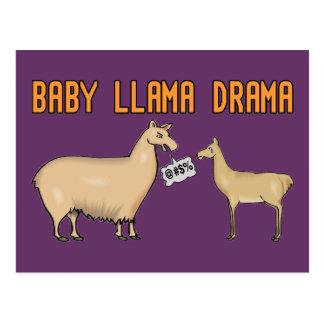 Baby Llama Drama Postcard