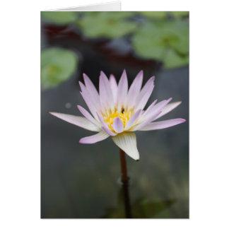 Baby Lotus Bloom Greeting Card (full size)